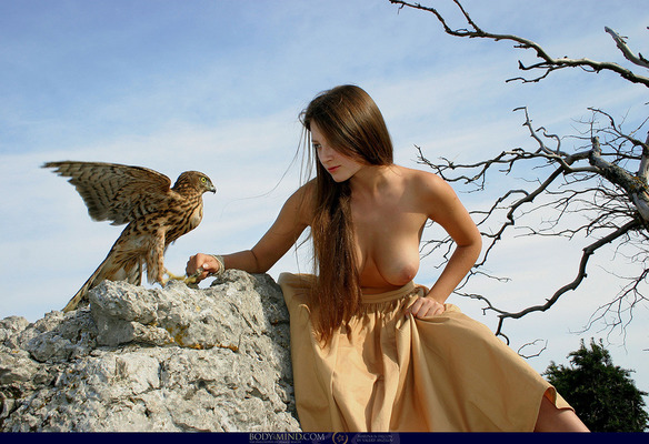 The Luckiest Falcon On Earth - 01